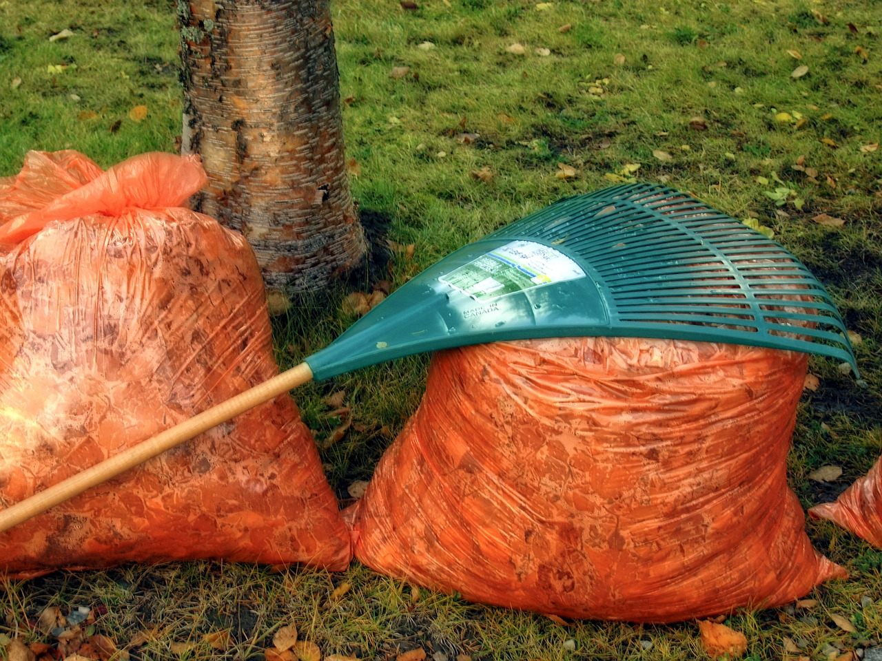 Spring and Fall clean-up are essential for eliminating debris and other sediment that can disrupt future growth. From trimming bushes to cleaning gutters to raking leaves, we can tackle any out door clean-up that your property might need.